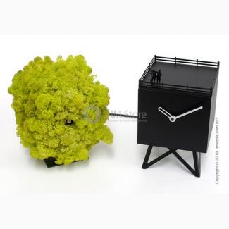 Превосходные настольные часы Progetti Birdwatching Clock