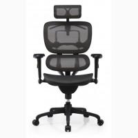 Компьютерное кресло ERGOHUMAN спинка/сетка, сидение/ткань, черная крестовина