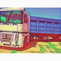 Услуги перевозчика, свободные зерновозы