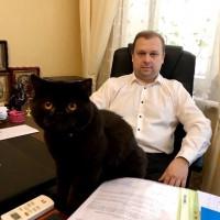 Адвокат в Києві. Сімейний адвокат